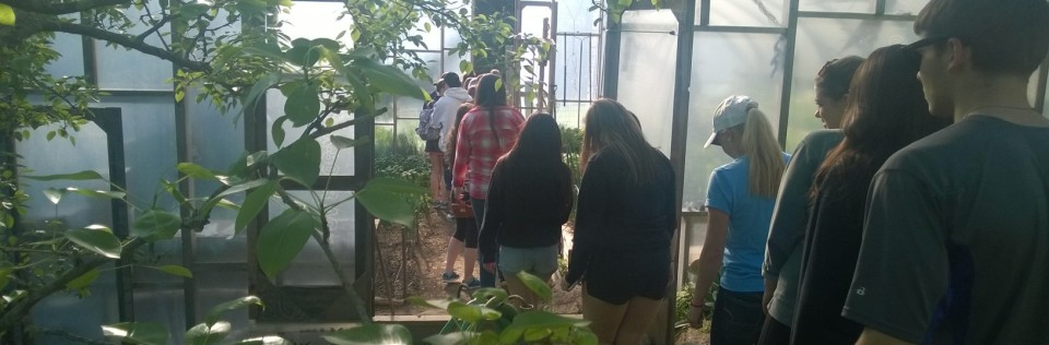 Students visiting the greenhouse